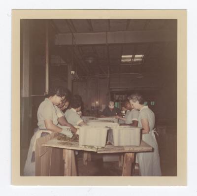 Women employees sorting through pickles at VITA Foods