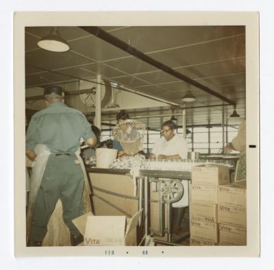 Packing fish at VITA Foods, 1969 February