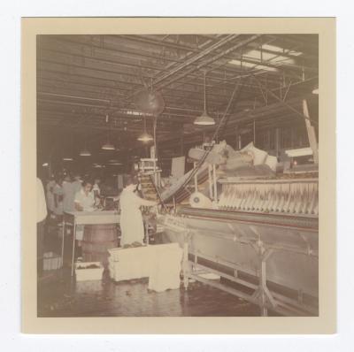 VITA Foods Production Line